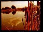 - Canalul Calugaru