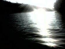 - Dunare  -  Insula