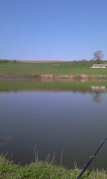 - camping piscicol