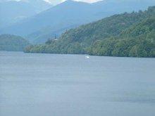 - Lacul Vidraru